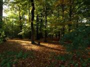 Park, Antwerp